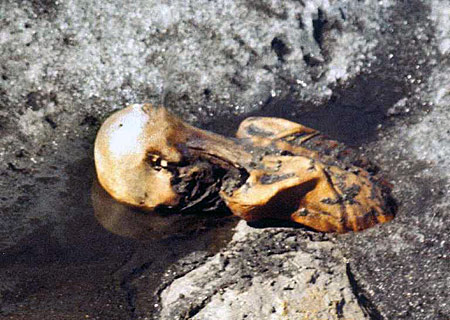 Ötzi the Iceman (photo: Wikicommons)